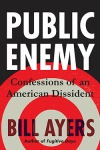AYERS-PublicEnemy-SMALL